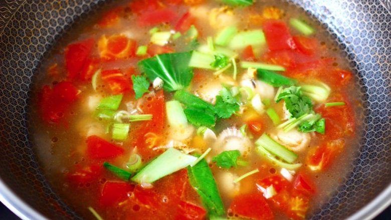 番茄扇贝鱼卤面,撒上葱花和香菜段即可关火。