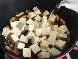 香菇炖豆腐,加入清水没过豆腐,炖煮5-6分钟