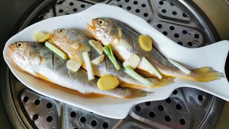 清蒸黄鱼,腌好上锅水开蒸10分钟