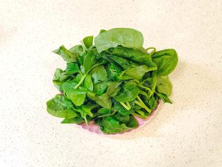 蒜泥木耳菜,木耳菜清洗干净,去掉老叶子