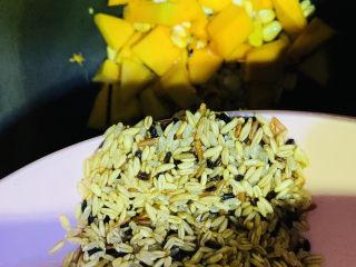 玉米南瓜粥,将洗净的三色米倒入电饭煲中