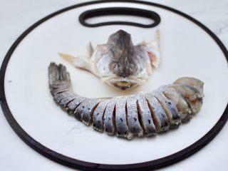 清蒸鲈鱼,鲈鱼去鳞去内脏洗净后,把鱼头先切下来,再把鲈鱼背部均匀切开,不要切断。