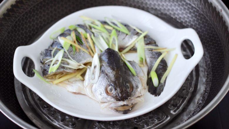 清蒸鲈鱼,锅中倒入适量的清水煮沸后,把腌制好的鲈鱼放入锅中。
