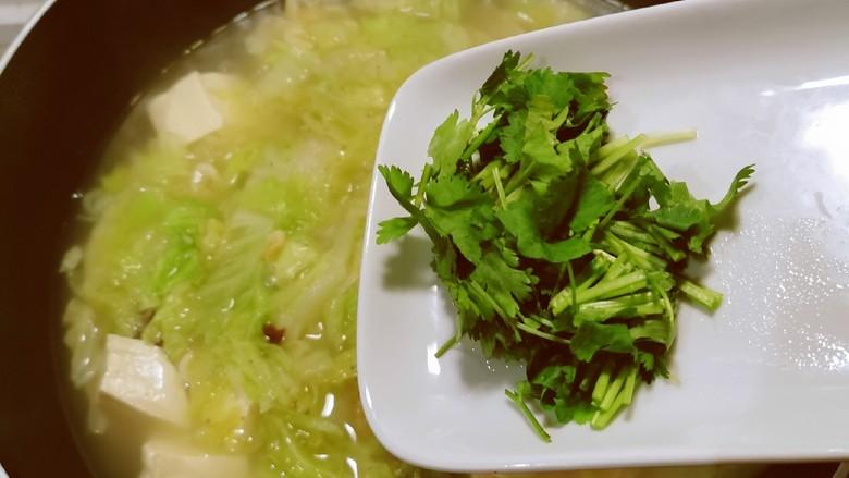白菜豆腐汤,放入香菜,关火。