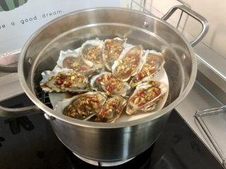 蒜蓉生蚝,蒸锅坐锅烧水,水开放入生蚝,中火蒸约10分钟