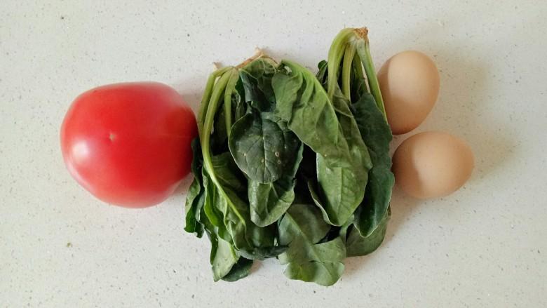 西红柿面疙瘩,准备好需要的食材