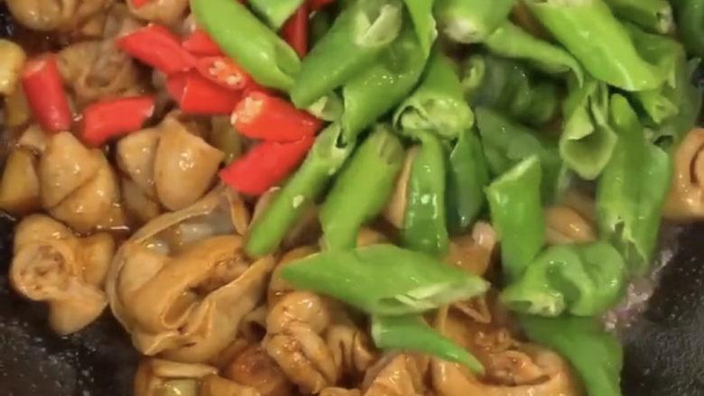 爆炒肥肠,所有料放入之后再爆炒一会就可放入青红辣椒翻炒一会。翻炒均匀即可