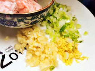 西红柿炒豆腐,葱姜蒜切末