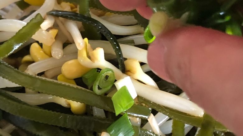 黄豆芽拌海带,撒香葱