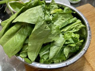凉拌油麦菜➕麻酱油麦菜,掰成三段