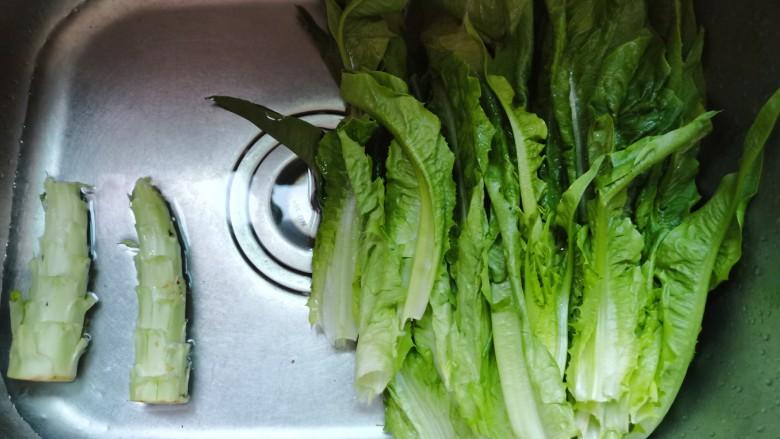 凉拌油麦菜,油麦菜叶片分开