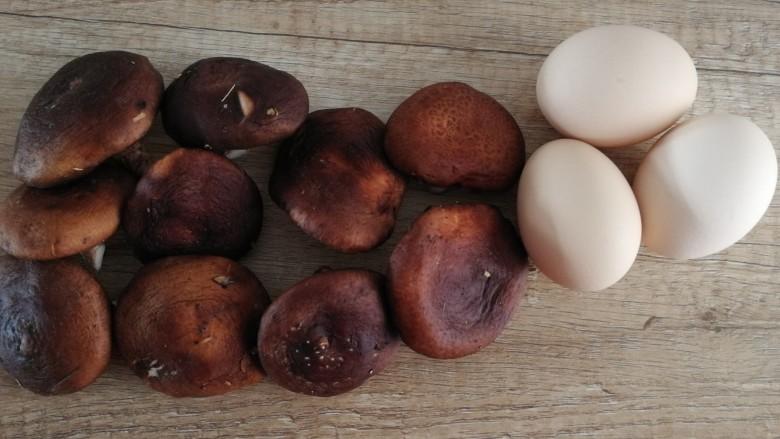 香菇炒鸡蛋,主料:香菇、<a style='color:red;display:inline-block;' href='/shicai/ 9'>鸡蛋</a>。