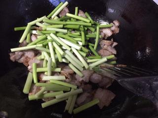 蒜苔回锅肉,下入蒜苔翻炒