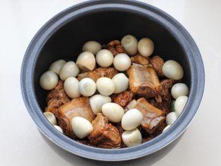 酱香排骨,再放入提前煮熟的鹌鹑蛋,添入一碗清水。
