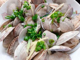 葱油花蛤,撒在花蛤之上