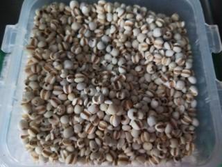 红枣小米燕麦粥,薏仁米一把