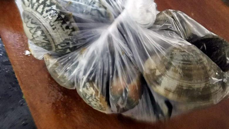 花蛤丝瓜汤,为什么被包成像粽子似的?为了保鲜