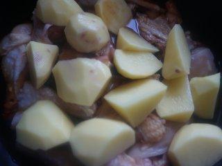 土豆香菇焖鸡,放入土豆块