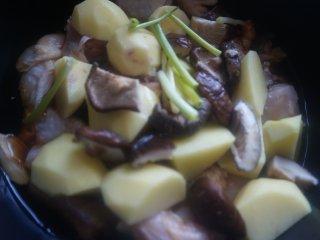 土豆香菇焖鸡,放入切段的小葱