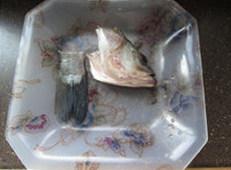 香辣鲈鱼,鲈鱼治净,斩下头尾备用