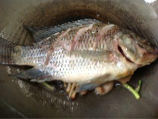 鲫鱼炖蛋,如图