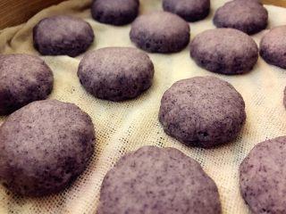 宝宝辅食:黑米馒头-12M+ ,第二次发酵好的状态,变得圆嘟嘟啦,是不是很可爱。