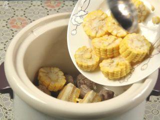 胡萝卜玉米排骨汤,加入切好的玉米段。