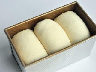 口袋三明治,放入烤箱进行第二次发酵,38度发酵至8-9成模。