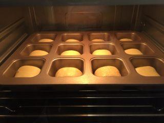奶酪小餐包,启动烤箱发酵功能进行二发50分钟