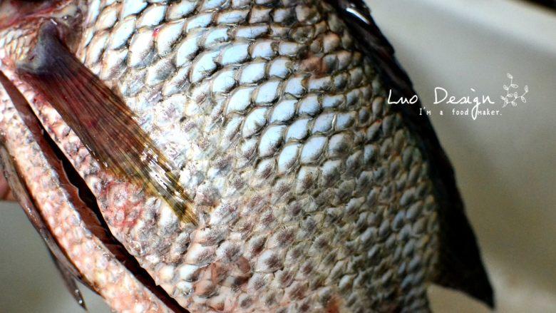 香煎罗非鱼,洗净鱼身,刮掉鱼鳞。