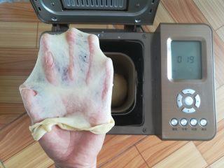 黄豆粗粮迷你汉堡,和面结束,拉一个手套膜,加了黄豆面。边缘有点裂