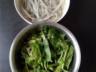 菠菜拌粉条,菠菜切长段;粉条沥干水分待用;