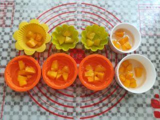水果果冻(白凉粉版),模具里倒入三分之一的凉粉水,放入适量的果粒