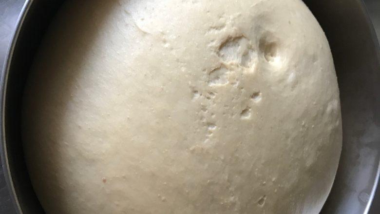 胚芽金枪鱼包,基本发酵40分钟左右至两倍大