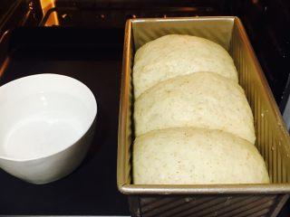 墨西哥香肠三明治,发酵至八分满!盖上土司盖,最底层,160度30分钟。