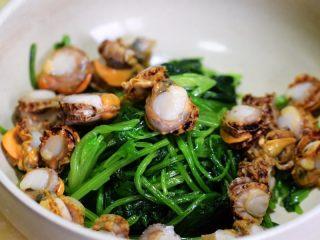 菠菜拌扇贝,将扇贝肉和菠菜入一容器中,加入蒜末、小米辣