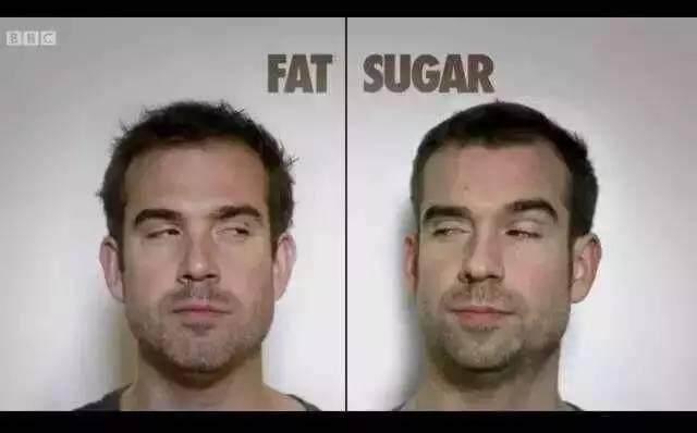 解读BBC-糖和脂肪,究竟谁才是危害我们健康的元凶?