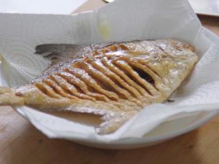 营养丰富又不长肉的老醋煎平鱼,将炸制好的平鱼放在吸油纸上,吸除多余的油。