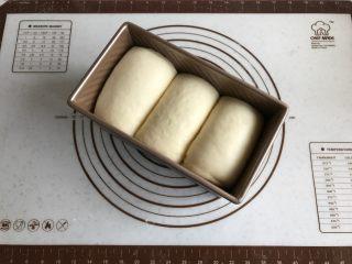 中种牛奶吐司,发至模具8分满时取出,此时烤箱选择吐司程序,上管调节140度下管调节165度,开始预热。