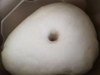 鲜虾火腿披萨,3.揉好的面团直接在面包机中发酵到两倍大。
