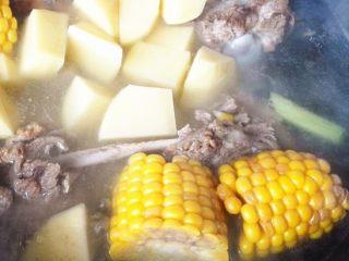 秋季滋补靓汤——玉米羊肉汤,出锅后放盐和白胡椒粉调味。