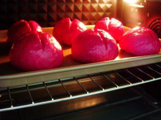 火龙果软欧包,烤箱提前预热:上180度,下175度,放中层烤20分钟。(如果提前上色了请及时加盖锡纸)