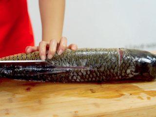 荆楚大地,吃鱼不见鱼——鲜美鱼糕,再沿着背脊切开~