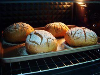 葡萄干红糖软欧,烤箱提前预热:上175度,下160度,放中下层,烤25分钟,出炉晾凉即可。
