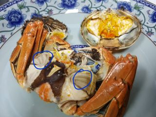 清蒸大闸蟹,16.将蟹身从中间掰开,你会看到一个扁的片是蟹心,这个也不可以吃。还有就是蟹盖上面,有一个像塑料袋一样的东西,这个是蟹胃也是不能吃的。
