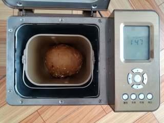 红糖谷物面包,收圆面团,继续发酵