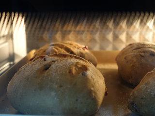 蔓越莓核桃软欧包,预热好的烤箱,200℃,20min至成熟且表面焦黄上色即可;
