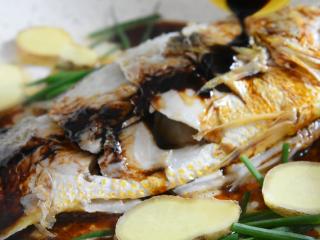 快手版红烧大黄鱼问世,简单操作,味道鲜美!,淋入20g生抽、5g老抽、20g料酒