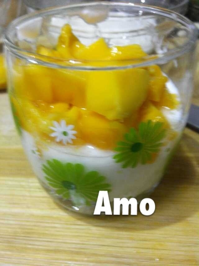 王氏-自制芒果酸奶(草莓酱酸奶)