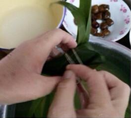 蜜枣花生粽,把粽叶尾部对折后折到一边,用粽绳将粽子拦腰捆好
